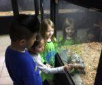 Local Kindergarteners Take Community Field Trip