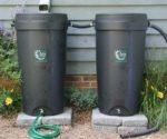 Ivy Rain Barrels