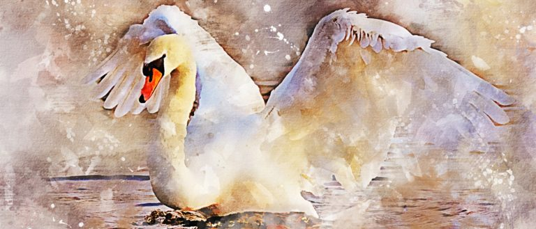 A watercolor painting of a swan splashing down into water.